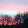 Pinebush Sunrise Albany, NY