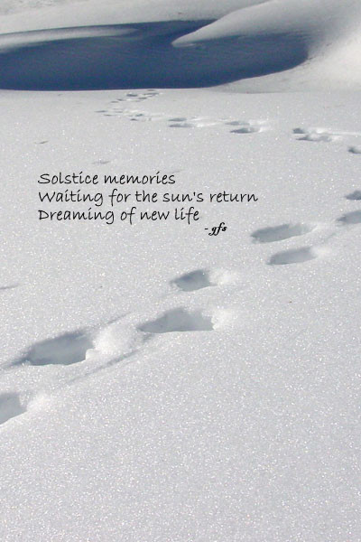 DSC02860_solstice