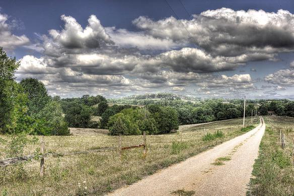 east-of-eden-william-fields